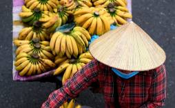 تصاویر بازارچههای خیابانی در ویتنام,عکس بازارهای ویتنام,تصاویر بازارچه های ویتنام