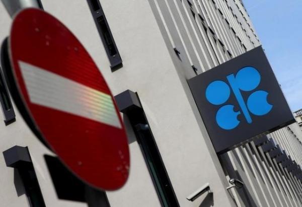 بزرگترین شرکت بازرگانی نفت جهان,گروه ویتول