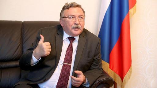 میخائیل اولیانوف,نماینده روسیه در سازمان های بین المللی