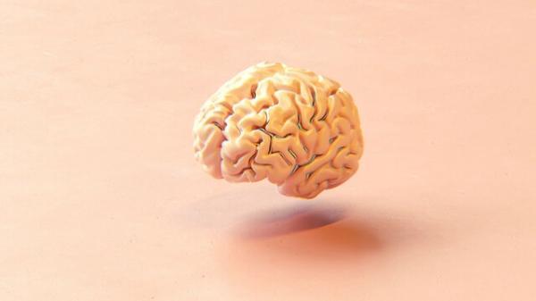 مغز,ساخت مغز به وسیله چاپگرسه بعدی