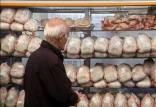 بحران مرغ در ایران,قاچاق جوجه یک روزه