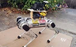 ربات,راهنمای نابینایان