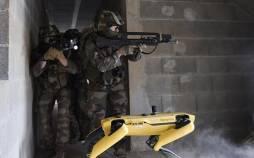 سگ رباتیک,ارتش فرانسه