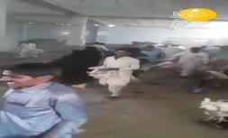 (ویدئو) هجوم مردم به یک مرغداری در نیکشهر؟
