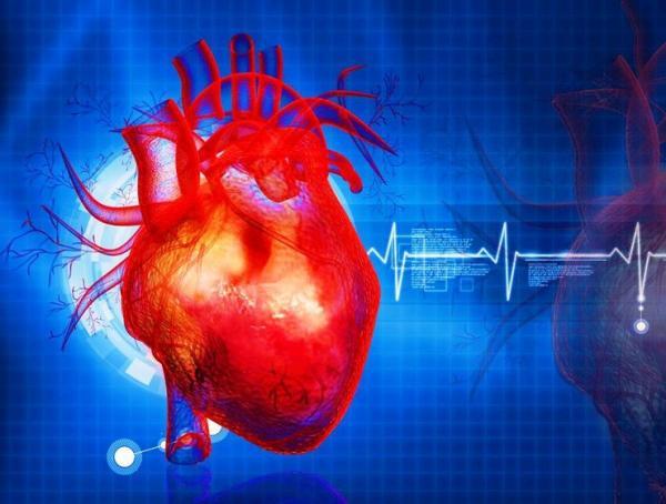 سیستم هشدار برای بیماریهای قلبی عروقی,بیماری قلبی عروقی