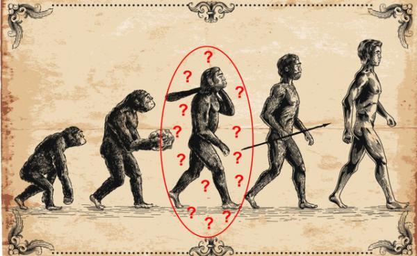 میمون,انسان از اجداد میمون