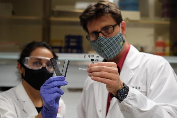 ارتقای یک پچ چسبی برای ترمیم رگهای خونی,ترمیم رگهای خونی