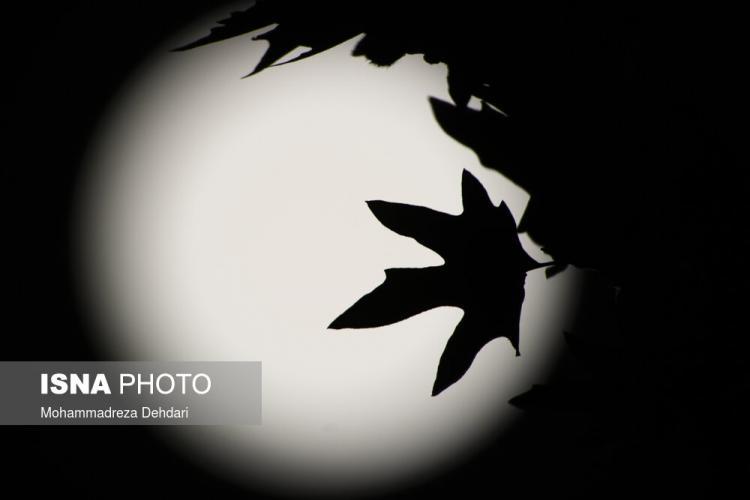 تصاویر اولین ابرماه سال ۲۰۲۱ در سراسر جهان,عکس های ابرماه در ایران,تصاویر ابرماه در تهران