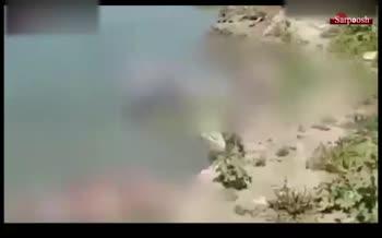 فیلم/ انداختن اجساد قربانیان کرونا در رودخانه گنگ هند