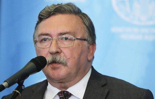 میخائیل اولیانوف,نماینده دائم روسیه در سازمانهای بینالمللی