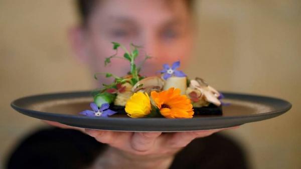 غذاهای عجیب و تهوع آور یک رستوران فرانسوی,غذاهای رستوران فرانسوی