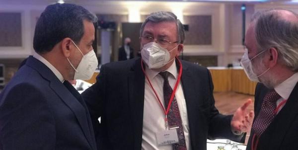 اولیانوف,مذاکرات وین
