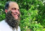 رکورد شکنی مرد عرب با تحمل نیش زنبور,تحمل ۲۴۰ هزار نيش زنبور توسط مرد عرب