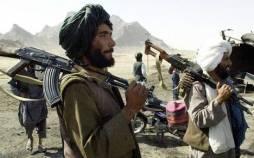 ذبیح الله مجاهد,سخنگوی طالبان