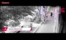 فیلم/ دزدان قمهکش در تهران