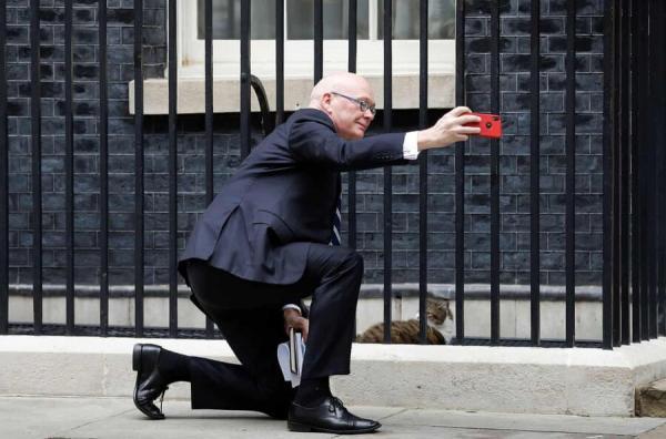 سلفی با گربه نخستوزیری,عکس سلفی با گربه نخستوزیری