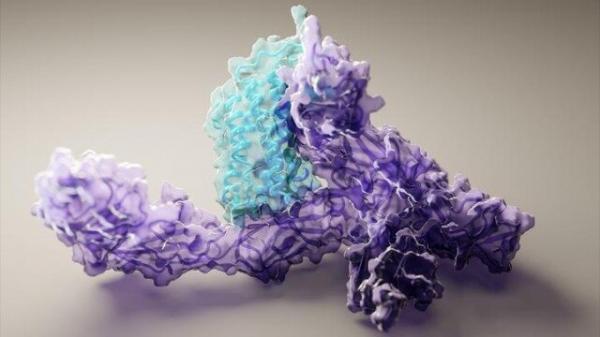 پروتئین,محاسبه ساختارهای پروتئینی با هوش مصنوعی