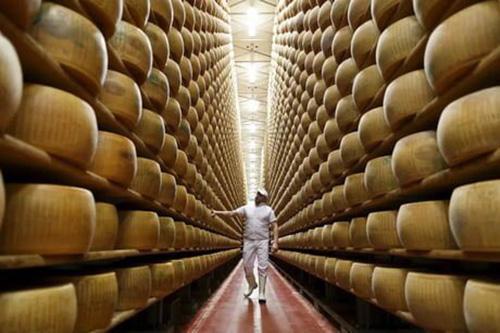 پنیر,پنیرهای گرانقیمت به جای وثیقه وام بانکی