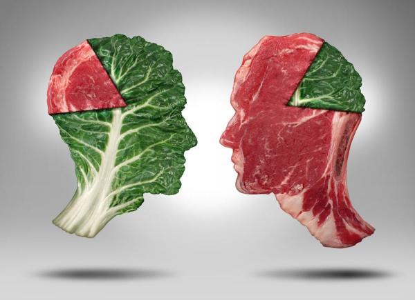 پروتئین حیوانی و گیاهی,تفاوت گوشت های گیاهی و حیوانی