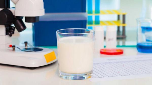 شیر,تولید شیر انسان