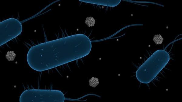 باکتری,نانوذرات نفره