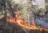 آتش سوزی در جنگل های گچساران,آتش گرفتن جنگل ها و مراتع منطقه حفاظت شده خامی