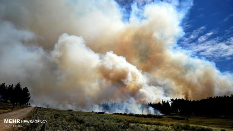 تصاویر آتش سوزی گسترده در کالیفرنیا,عکس های آتش سوزی در کالیفرنیا,تصاویری از آتش گرفتن جنگل ها در کالیفرنیا