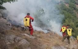 آتش در جنگلهای هیرکانی استان گلستان,آتش سوزی در جنگل های گلستان