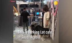 فیلم/ کافه سگها در ریاض عربستان