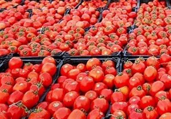 قیمت گوجه و قیمت برنج ایرانی,افزایش قیمتها در ایران