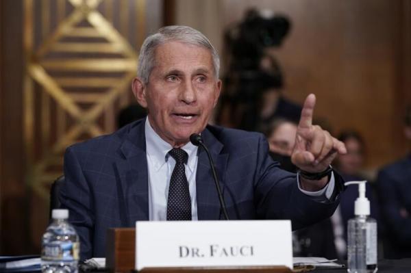 آنتونی فائوچی, مدیر موسسه ملی بیماری های عفونی و آلرژی در آمریکا
