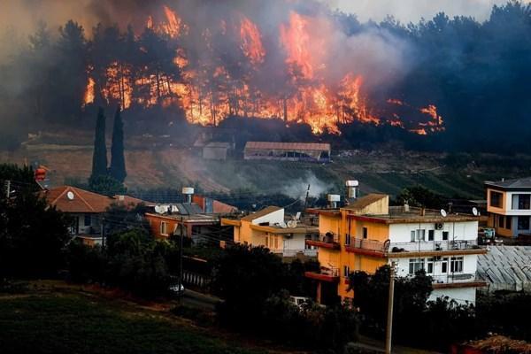 «رجب طیب اردوغان» رئیسجمهور,آتش سوزی ترکیه