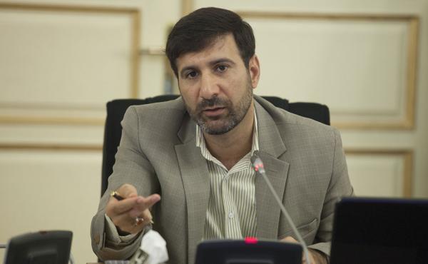 هادی طحان نظیف,طرح اینترنت در شورای نگهبان