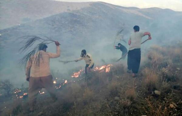 آتش سوزی در ارتفاعات تنگه هایقر,آتش سوزی در فیروزآباد فارس