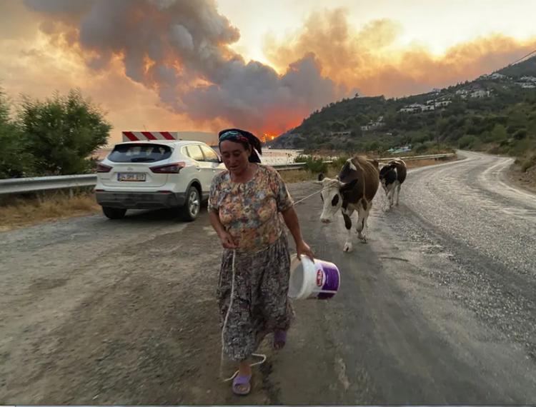 تصاویر روز دوازدهم مرداد 1400,عکس های دیدنی 12 مرداد 1400,تصاویر روز 3 آگوست 2021