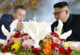 خط تماس برون مرزی میان سئول و پیونگیانگ,رابطه کره شمالی و کره جنوبی