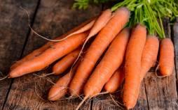 قیمت هویج در بازار,هویج اصفهان قیمت