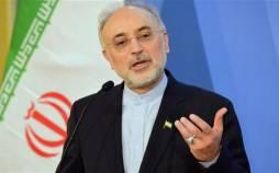 صالحی و زنگنه,حمایت از دولت روحانی
