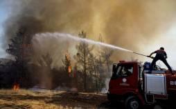 آتش سوزی جنگهلای ترکیه,علت آتش سوزی جنگهای ترکیه