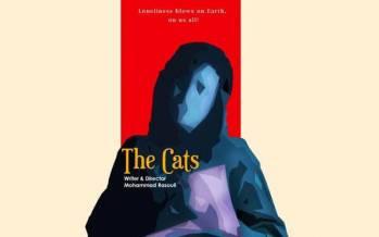 فیلم کوتاه گربه ها,جشنواره آمریکایی