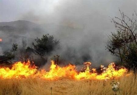 سفید کوه لرستان,آتش سوزی جنگلهای سفید کوه لرستان