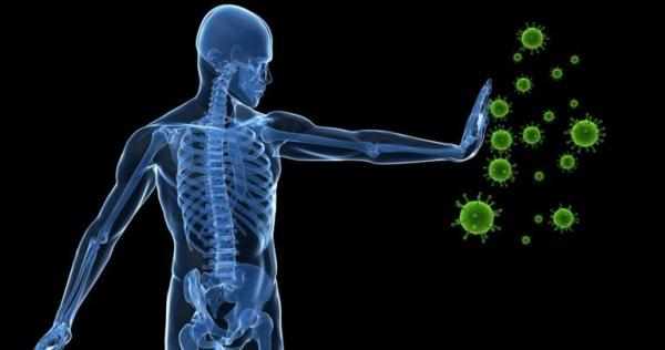 تقویت سیستم ایمنی,تاثیر پیاز و سیر در افزایش سیستم ایمنی بدن