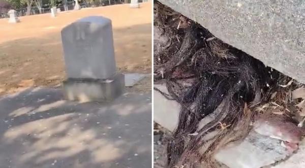 برخورد ترسناک با موهای بیرون زده از قبر,موهای بیرون زده از یک قبر قدیمی