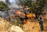 مهار آتش سوزی جنگلهای کوه نیر,جنگلهای کوه نیر