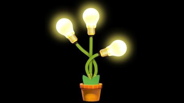 گیاهان درخشان,جایگزین چراغها