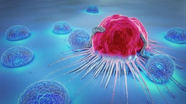سرطان,افزایش خطر مرگ با هر ماه تاخیر در درمان سرطان
