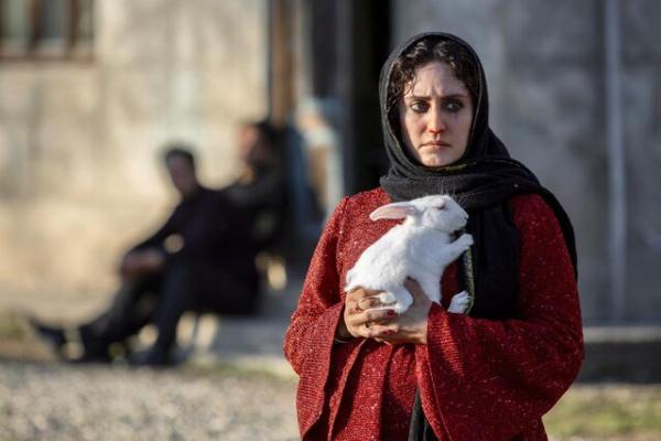 فیلم سینمایی تی تی,جشنواره سینمای مولف مراکش