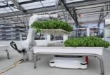 کشاورزی رباتیک,کشاورزی با ربات