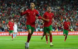 انتخابی جام جهانی 2022 قطر,صعود تیم ملی دانمارک به جام جهانی قطر