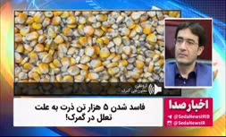 فیلم   فاسد شدن ۵ هزار تن ذرت به علت تعلل در گمرک